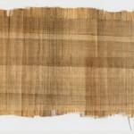 Feuille de Papyrus