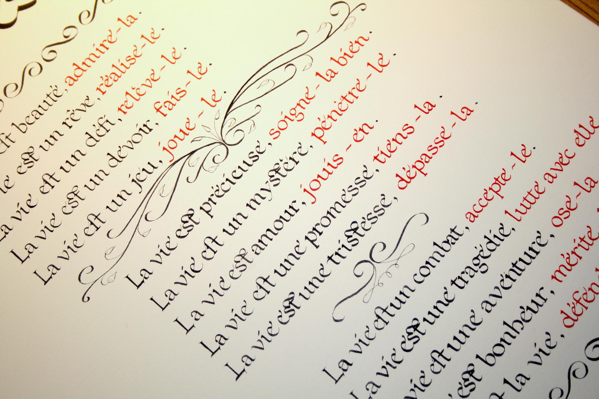 Calligraphie latine | Enluminure médiévale